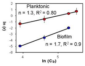 Graph showing response of planktonic and biofilm cells of Pseudomonas aeruginosa to chlorine, (c) 1994, CBE