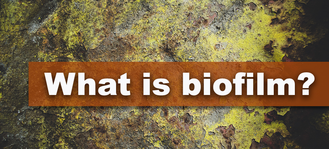 A banner with the words what is biofilm in front of an image of microbes